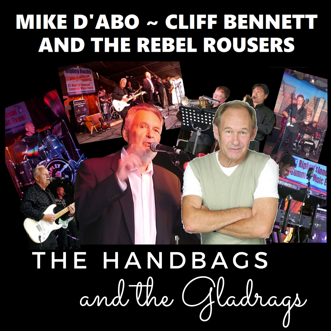 The Handbags and The Gladrags